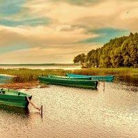 Плещеево озеро :: Владимир Голиков