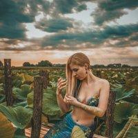 Сказка рядом с нами ... :: Андрей Володин