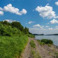 Река Томь, п. Подъяково :: Владимир Деньгуб