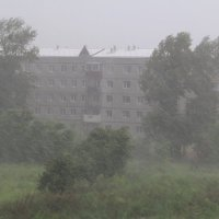 ... дождь ... :: JT --------      SHULGA  Alexei
