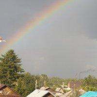 радуга :: валя елисеева