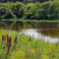 Примирив июлем берега... :: Лесо-Вед (Баранов)