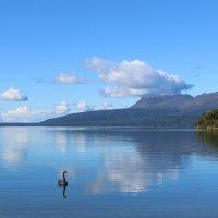 озеро Таравера :: Natalya секрет