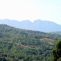 Туман в горах :: Алла ZALLA