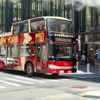 Тури-тура, тури-тура туристы... :: Олег Чемоданов