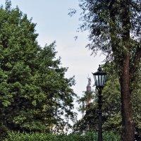 Александровский сад :: Игорь Свет