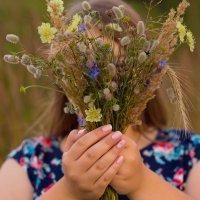 Красота полевых цветов :: Екатерина Лукьянчук