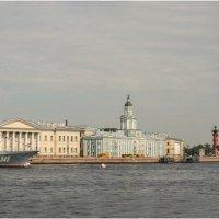 Предпразничная панорама Невы :: Борис Борисенко