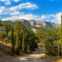 Дорога в горы. :: Антон