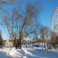 В парке :: Anna Быстрова