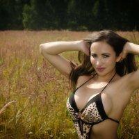 Яркий, солнечный день в поле. :: Геннадий Белоусов