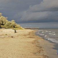 Морской берег :: Роман Фоторомарио