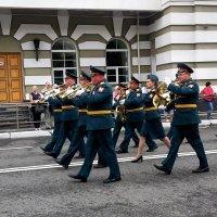 В трубы дуют трубачи... :: Елена Байдакова