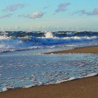 На пляж погреться)) :: Ольга Чистякова
