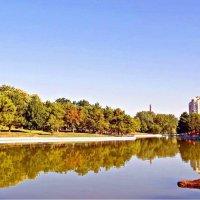 утро в парке :: Александр Корчемный