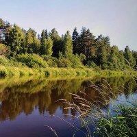 Ты неси меня река за крутые берега..... :: Павлова Татьяна Павлова