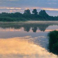 утро на реке :: cfysx