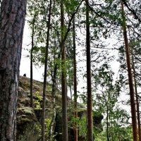 Вид с деревянной лестницы Катаявуори :: Елена Павлова (Смолова)