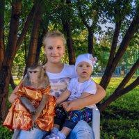 Познакомились с обезьянкой :: Владимир Деньгуб
