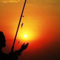 Оби-Ван Кеноби ловит рыбу :: Светлана Козлова
