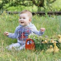Желтое лето :: Анастасия Грек