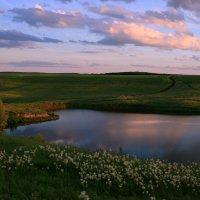 Солнце в озеро глядится, до чего тепла водица ! :: Евгений Юрков