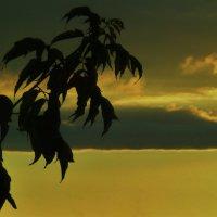 закат, пейзаж :: Valentina