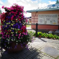 Финская клумба цветов. :: Светлана Калмыкова