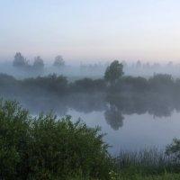 Утро туманное. :: IRINA VERSHININA