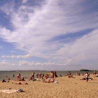 Лето - это маленькая жизнь . :: Мила Бовкун