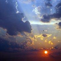 Puesta del sol :: Олег Шендерюк