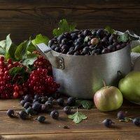 Натюрморт с крыжовником и фруктами :: Валерий Хинаки
