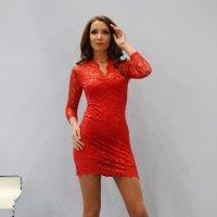Lady in red :: Анатолий Шулков