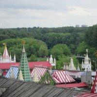Панорама Измайловского Кремля :: Дмитрий Никитин