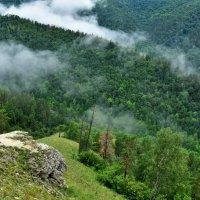 Туман в горах. :: Елена Савчук
