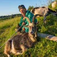 Дед с козами :: Андрей Нестеренко