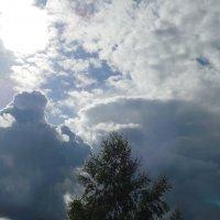 облака :: Светлана Краснова