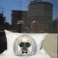 Избыток информации о котах стремится к бесконечности!... :: Алекс Аро Аро