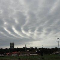 Небо так красиво рисует! :: Ольга Минская