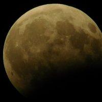 Лунное затмение 7 августа 2017 :: Дарья Fox