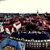 Эстония! Таллин! :: Натали Пам