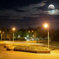 лунное затмение_07.08.2017 :: Nataliya Markova