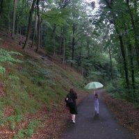 Дождик - это весело! :: Tanja Gerster