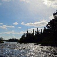 Серебряная река :: Ольга