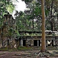 Камбоджа - Королевство чудес!!! :: Вадим Якушев