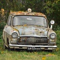 Скорая осень :: Андрей Михайлин