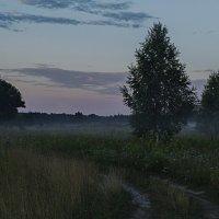Туманное утро :: Константин Тимченко