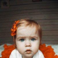 Малышка :: Анастасия