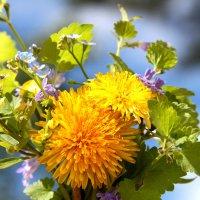 Букет полевых цветов :: Алла ZALLA