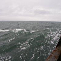 Азовское море :: Valdemar Кравченко